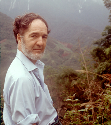 thesis of collapse by jared diamond